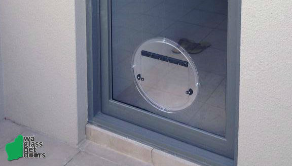 Pet Doors \u2013 let your pet out in style. & Glass Pet Doors Perth - WA Glass Pet Doors Pezcame.Com